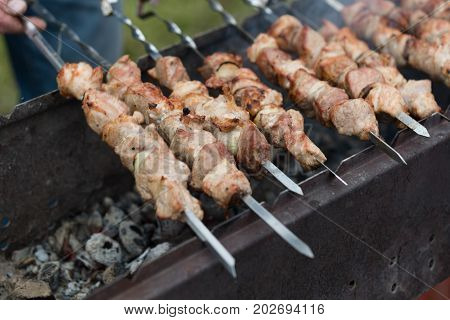 shish kebab on skewers. meat roasted on coals