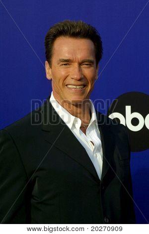 LOS ANGELES - MAY 19:  Arnold Schwarzenegger arriving at the World Stunt Awards 2002 at Barker Hanger on May 19, 2002 in Santa Monica, CA