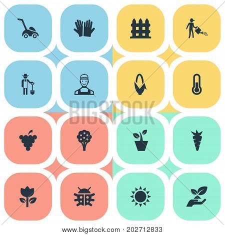 Elements Temperature, Apple Timber, Fruit And Other Synonyms Apple, Sun And Blossom.  Vector Illustration Set Of Simple Horticulture Icons.