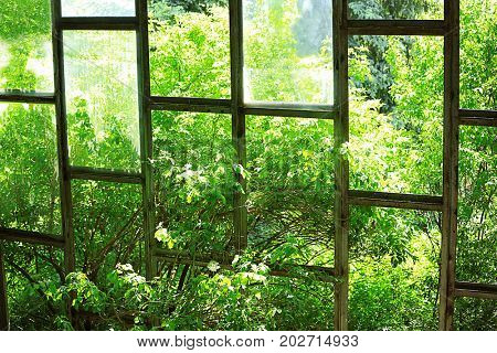 Glass wall of old abandoned building in the country