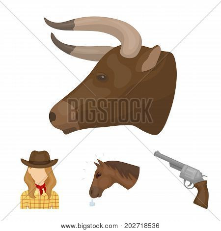 Head of a horse, a bull's head, a revolver, a cowboy girl.Rodeo set collection icons in cartoon style vector symbol stock illustration .