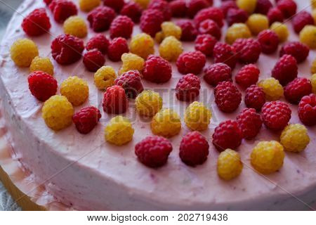 Handmade raspberry cheesecake with pink cream. Cooking at home