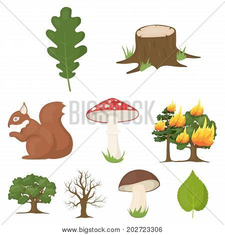 Forest set icons in cartoon style. Big collection of forest vector symbol stock
