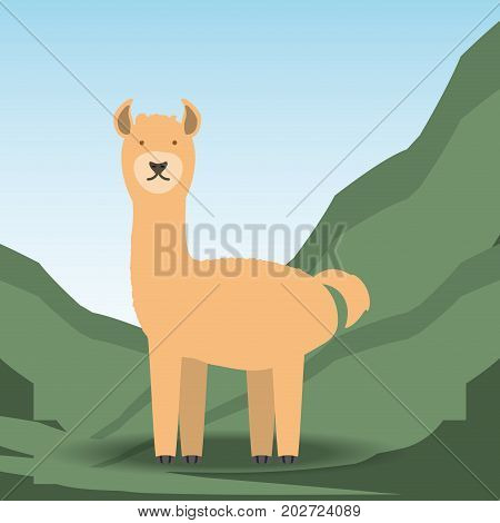 alpaca icon over mountains background colorful design vector illustration
