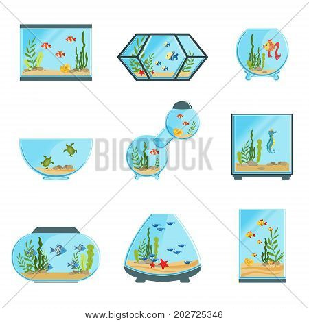 Aquarium tanks set, different types of aquariums with plants and fish detailed vector Illustrations on a white background