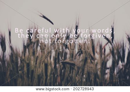 Inspirational quote - Be careful with your words they can only be forgiven not forgotten. Blurry retro styled background.