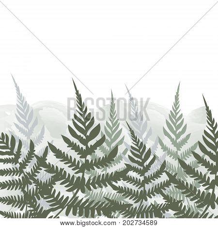 Fern Frond Tropical Forest Background Leaves Vector Frame Illustration. Green Bushes Forest Growing