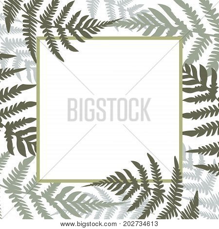 Fern Square White Frame Vector Illustration. Green Tropical Forest Plant Leaves Decoration Backgroun