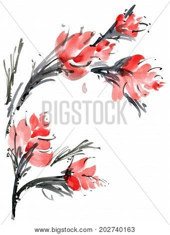 Watercolor and ink illustration of flower. Sumi-e u-sin painting. Decorative element for design greeting card or invitation.
