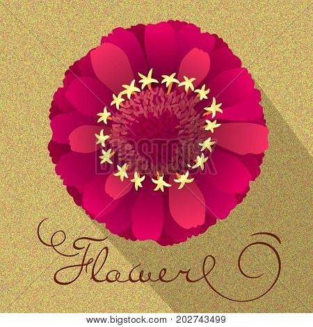 flower. view from above. colored vector illustration