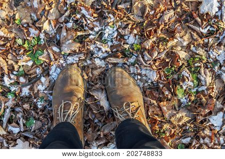 Boots on the yellow mapple leaves with first snow on it