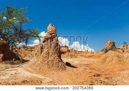 Big Cactuses In Red Desert, Tatacoa Desert, Colombia, Latin America, Clouds And Sand, Red Sand In De