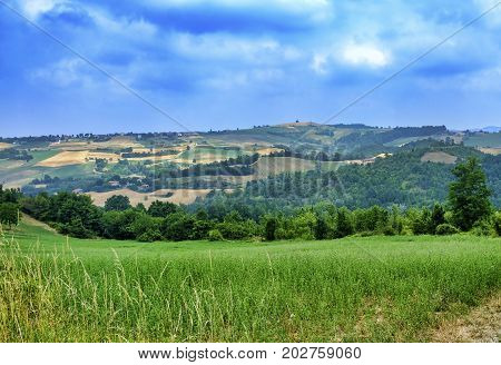 Rural landscape at summertime along the road from Val di Nizza to Carmine (Pavia Lombardy Italy)