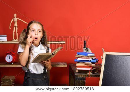 Schoolgirl Having Idea Holds Open Book In Her Classroom