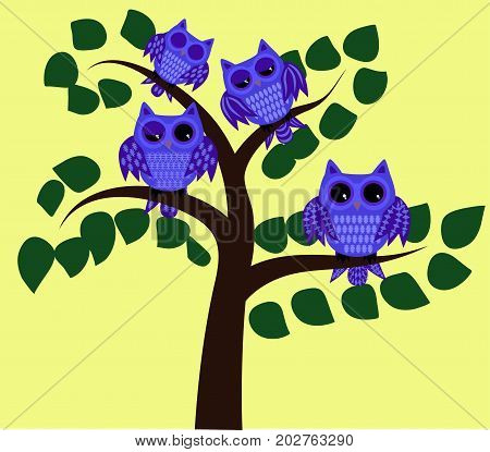 Four Blue Waking Owls With Open, Half-open And Closed Eyes On A Tree Branch With Leaves