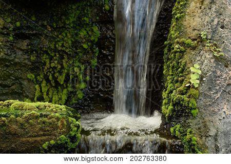 Green fresh moss on the rock waterfall