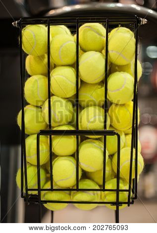 Large Number Of Yellow Tennis Balls In The Basket