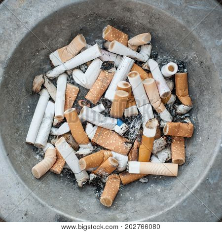 Ashtray Full Of Cigarettes Butt And Ashes. Real Life Scene