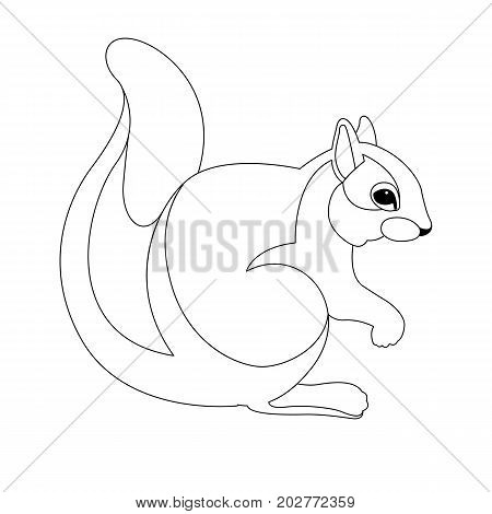 squirrel vector illustration  line drawing side profile