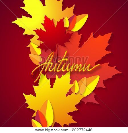Autumn. Vector season typographic illustration with red and yellow leaves. Paper cut poster with handlettered 3d inscription. Floral decoration. Material design. Mid autumn festival poster template
