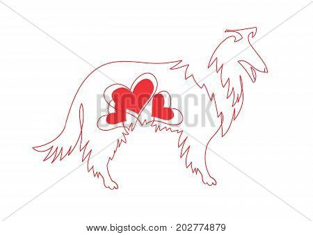 Vector image of an border collie dog on white background. Red line a dog zodiac and heart symbols