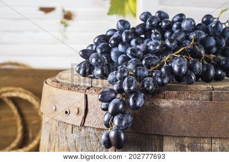 Still life of red grapes on a wooden barrel. Concept of the grape harvest wine making and viticulture.