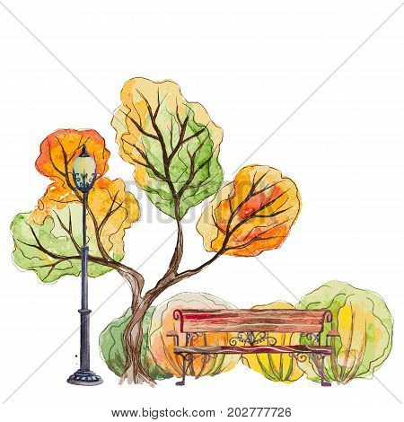 Vector hand drawn watercolor autumn background with park, outdoor elements, orange, green tree, bench, shrubs and lantern on the white background