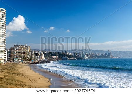 Beach with Sea Gulls in Vina del Mar Chile