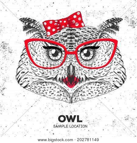 Retro Hipster bird owl. Hand drawing Muzzle of bird owl. Girl of 60s