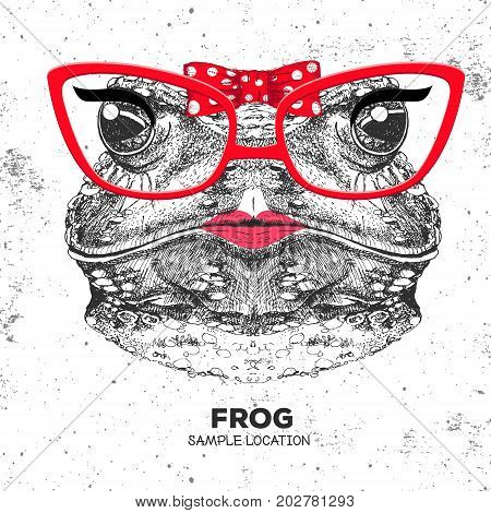 Retro Hipster animal frog. Hand drawing Muzzle of animal frog. Girl of 60s