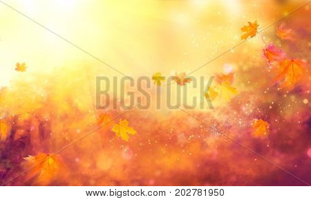 Autumn background. Fall Abstract autumnal background with colorful leaves and sun flares, flying on wind colorful bright leaves, yellow, orange and red colors backdrop. Abstract art design