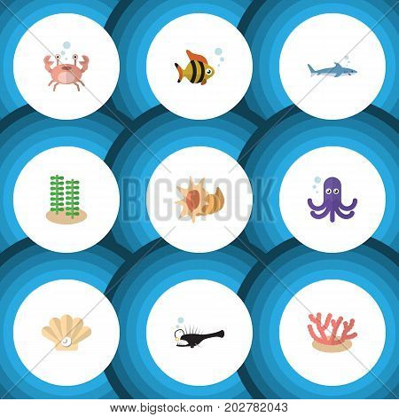 Flat Icon Nature Set Of Shark, Fish, Seashell And Other Vector Objects