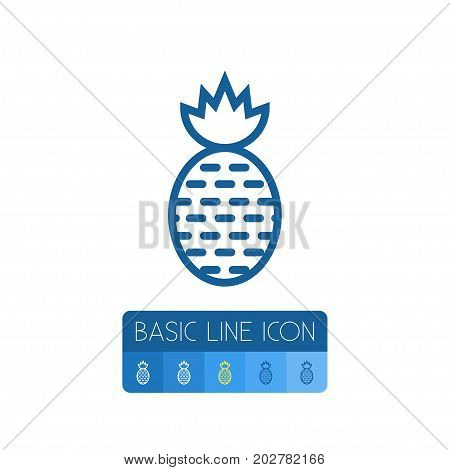 Freshness Vector Element Can Be Used For Ananas, Pineapple, Fruit Design Concept.  Isolated Tropical Fruit Outline.