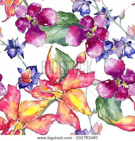 Wildflower orchid flower pattern in a watercolor style. Full name of the plant: orchid cattleya. Aquarelle wild flower for background, texture, wrapper pattern, frame or border.