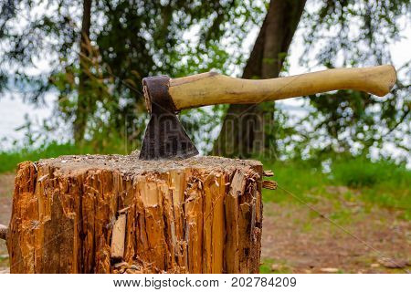 Old axe stuck on a tree stump, behind a vague background of trees.