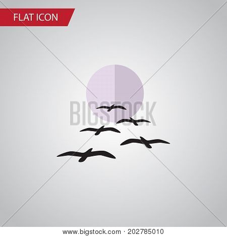 Gull Vector Element Can Be Used For Gull, Bird, Moon Design Concept.  Isolated Birds Flat Icon.