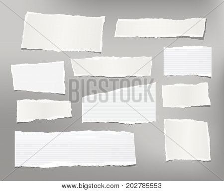 White ripped striped note, copybook, notebook paper stuck on light gray background