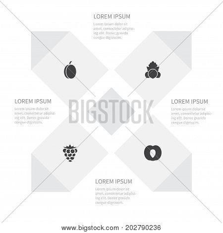 Icon Food Set Of Plum, Bramble, Leaf And Other Vector Objects
