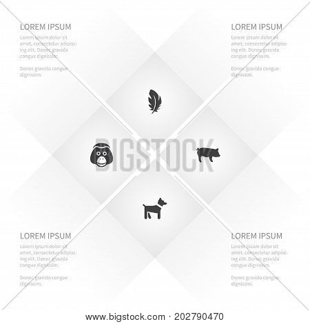 Icon Animal Set Of Ape, Hound, Fluff And Other Vector Objects