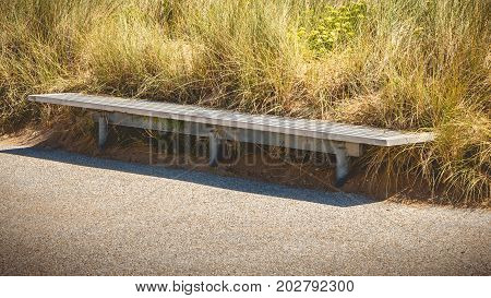 Wooden Bench In The Middle Of The Greenery