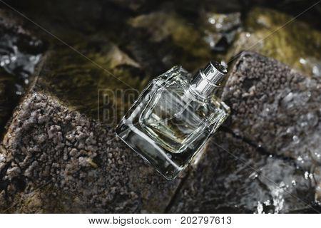 perfumery, Bottle of stylish female perfume at rocks