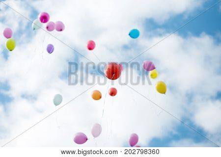 Colorful helium balloons flying in blue cloudy sky. Festive background.