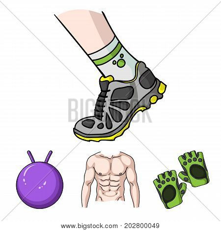Men's torso, gymnastic gloves, jumping ball, sneakers. Fitnes set collection icons in cartoon style vector symbol stock illustration .