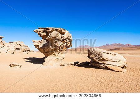 Stone Tree, Altiplano