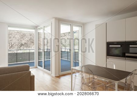 Open space with living, kitchen e balcony. Nobody inside
