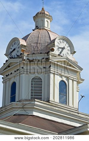 SUMMERVILLE, GA - August 26, 2017 Birds roost on the clock tower of the Chattooga County Courthouse.