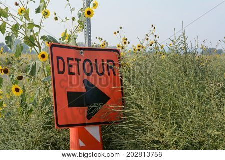 Detour sign with arrow into empty field of brush and sunflowers