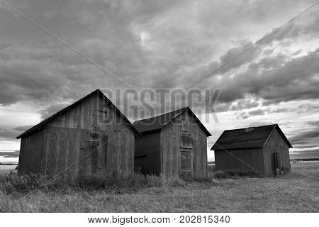 A black and white image of three old wooden granaries under stormy skies.
