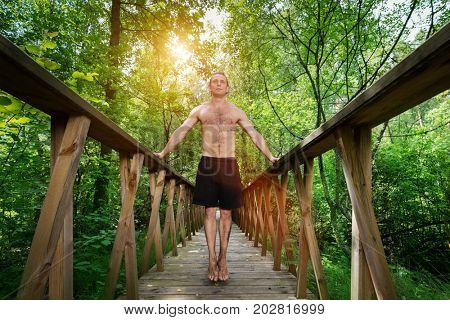Young, confident man standing on a footbridge in the forest. Nature explorer. Low angle perspective.