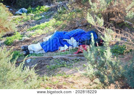 Agadir. Morocco - December 22 2016: Camel driver is sleeping in the bushes